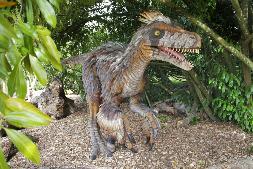 Dinozoore ii safari exceptionnel au temps des dinosaures for Zoo en yvelines