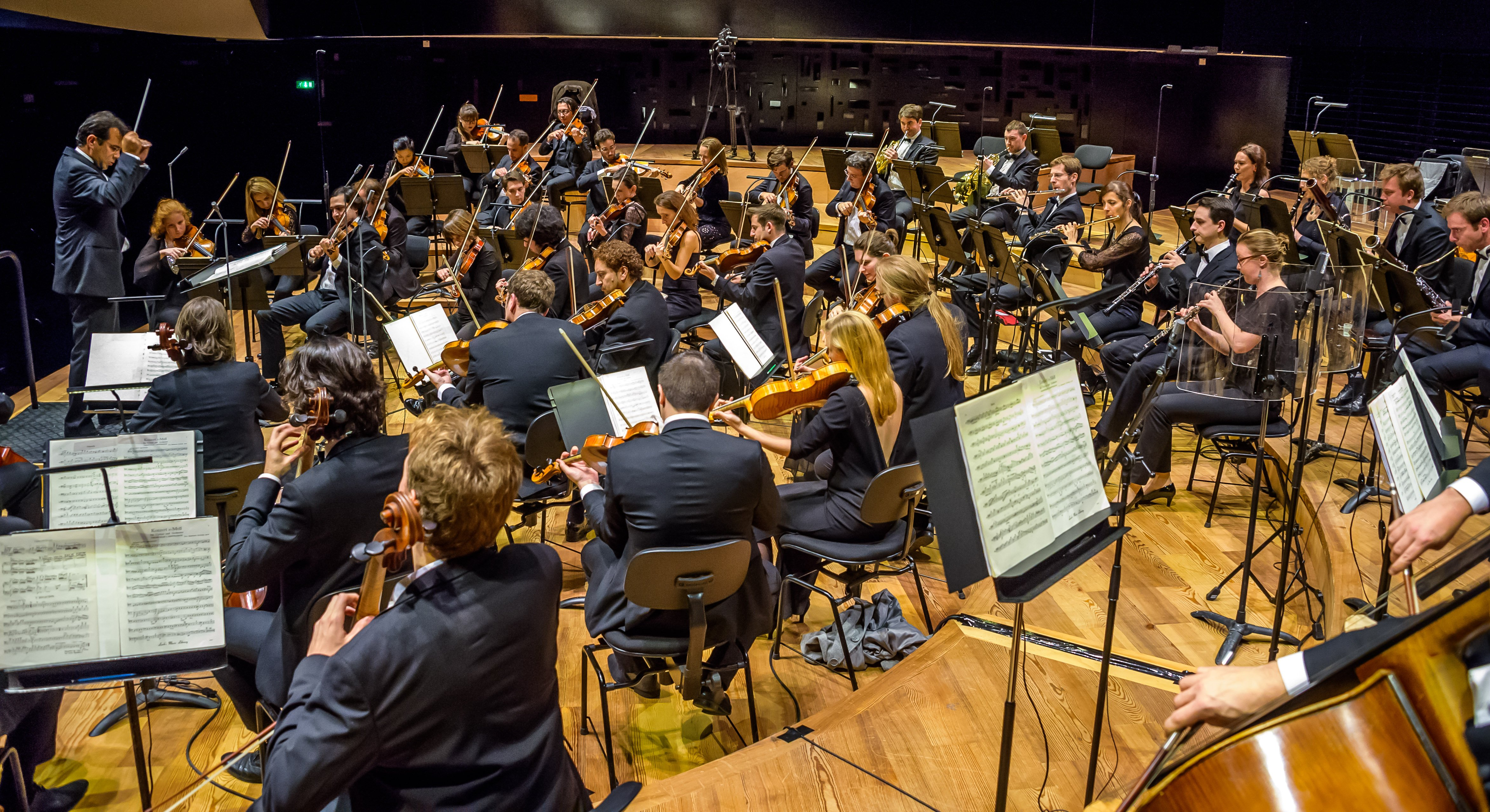 Orchestre de l'Alliance © J-C Guilloux