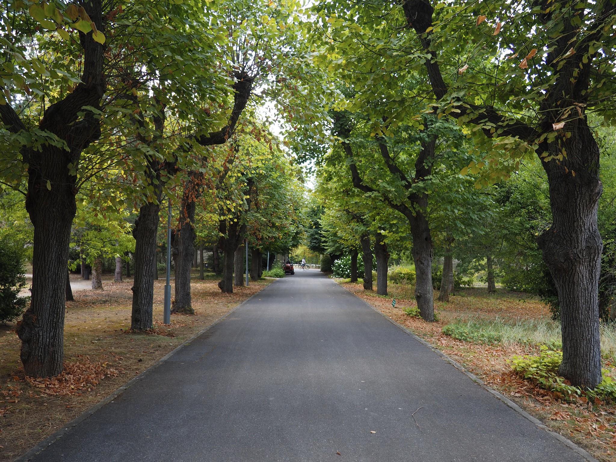 Parc départemental de Montesson ©CD78/C.BRINGUIER