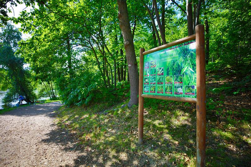 Travaux : le bois de la Cranne ferme pour 15 jours © CD78/N.DUPREY