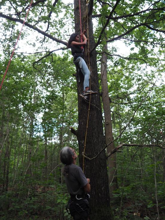 Les écodélégués grimpent aux arbres © CD78/C.BRINGUIER