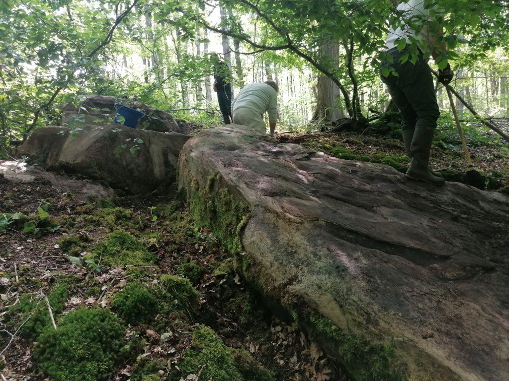 Cachés sous de la mousse en forêt, les blocs sont lavés et répertoriés. © CD78 / N.Théodet